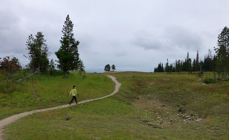 Hiking to Storm Point in Yellowstone National Park
