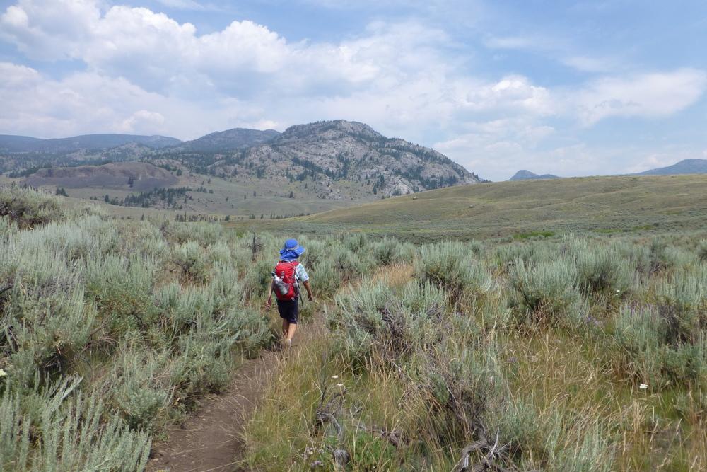 Boy hiking through sage brush
