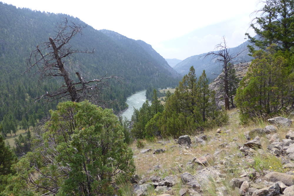 yellowstone river from above