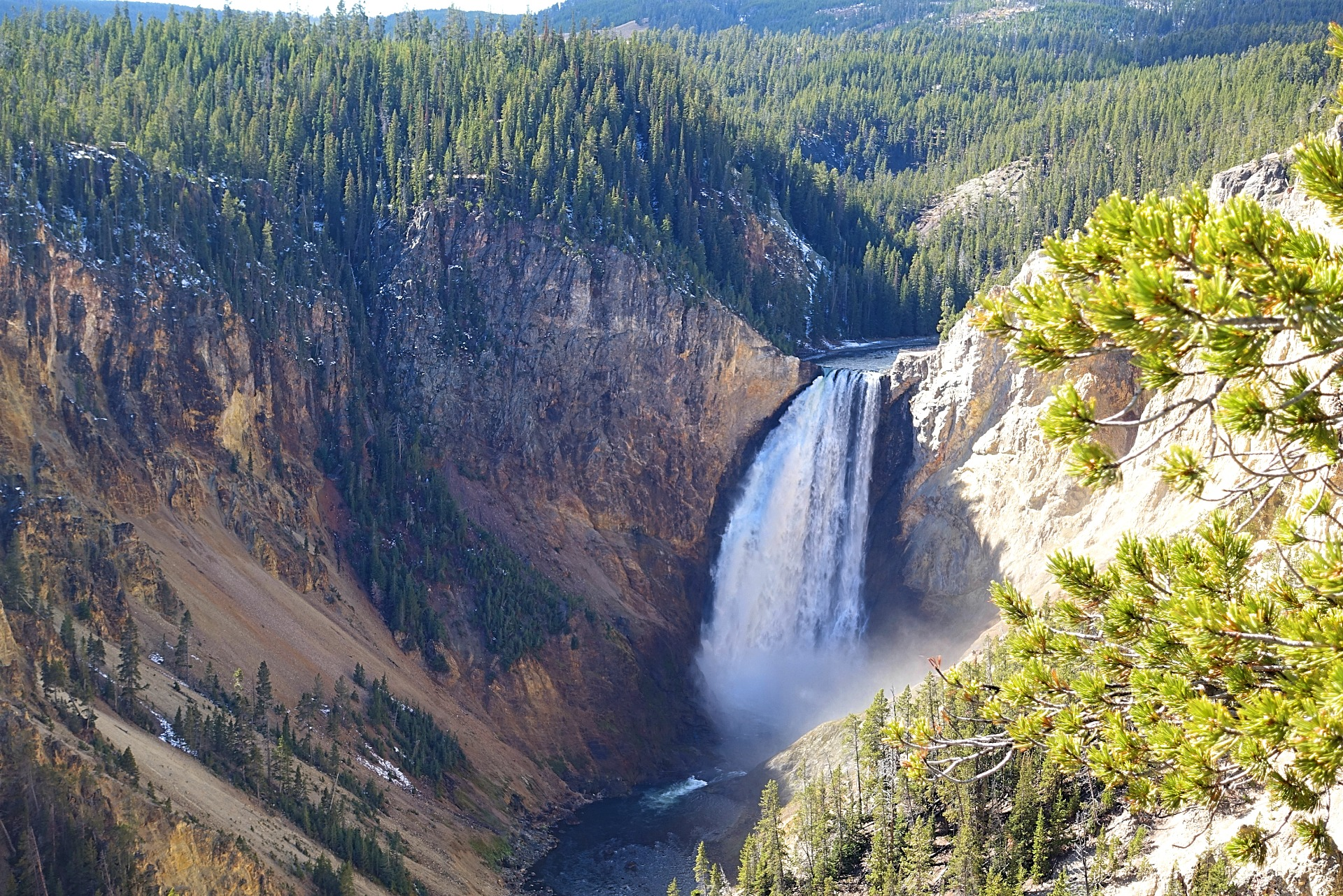 what to do in Yellowstone - see Lower Falls of the Yellowstone at Canyon