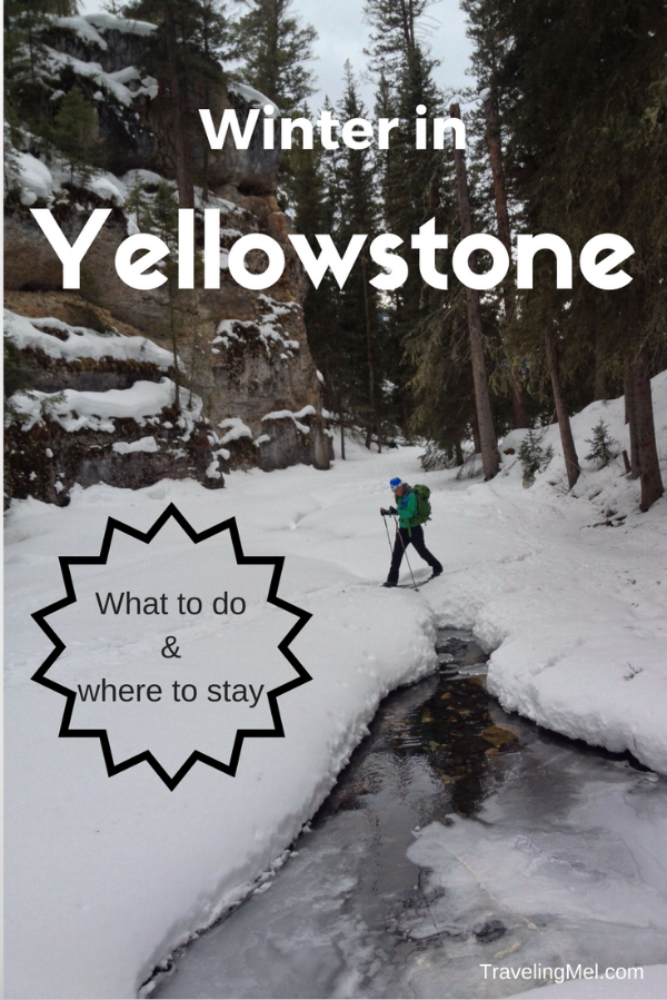 Top Things to Do in Yellowstone in Winter -- skiing, snowshoeing, ice skating, hot chocolate, snow machines and more!