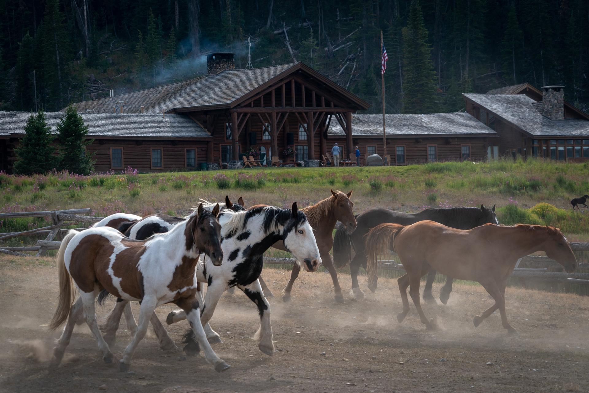 Dude Ranches near Yellowstone Brooks Lake Lodge